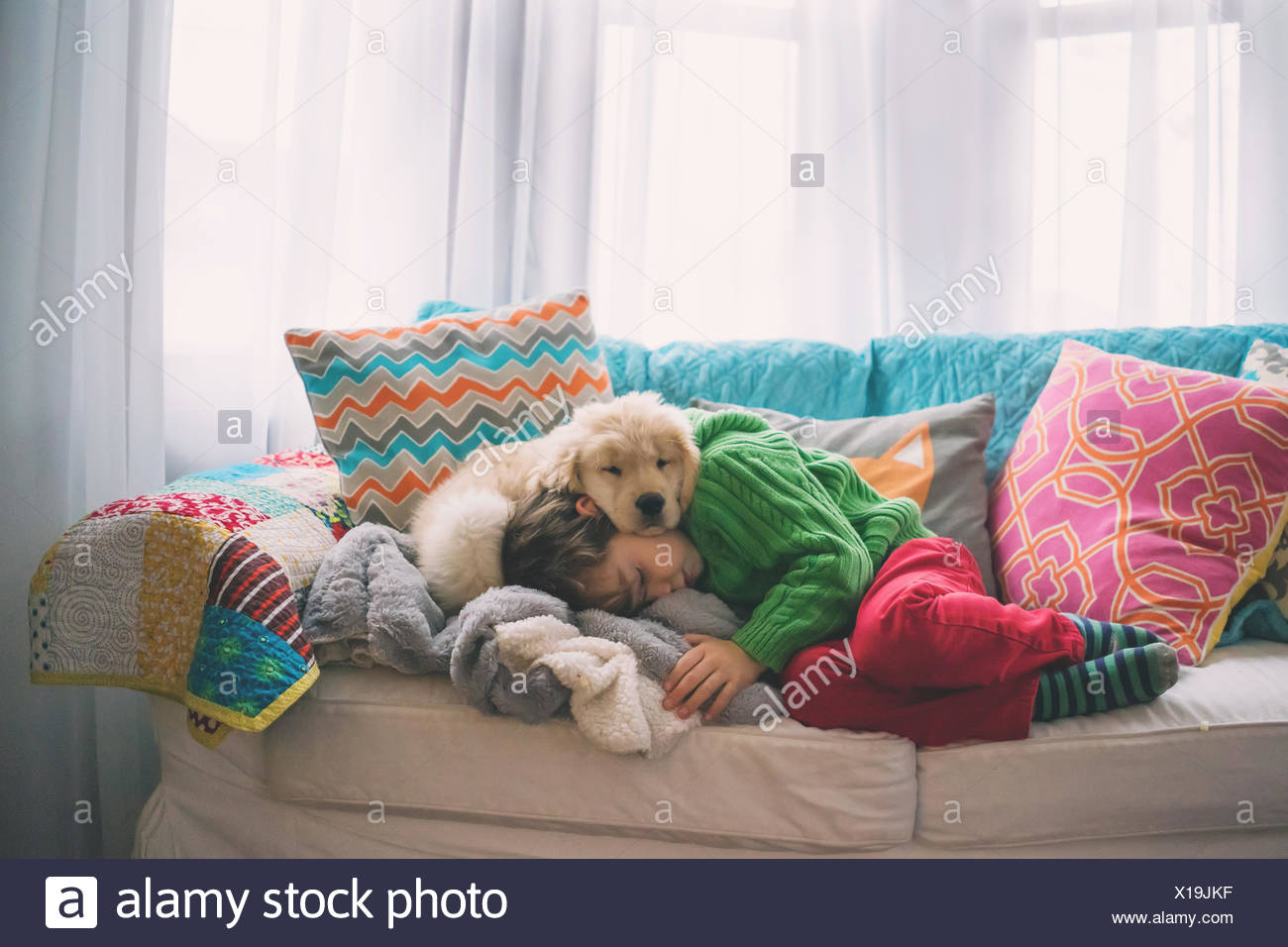 Boy sleeping on sofa with golden retriever puppy dog - Stock Image