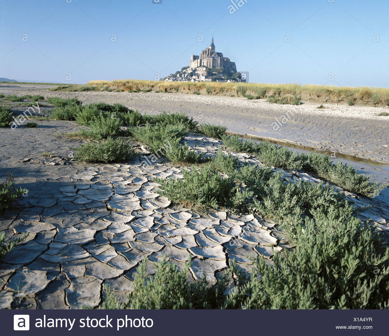 low ebb tide earth cracked France Europe Mont St. Michel Normandy drily - Stock Image
