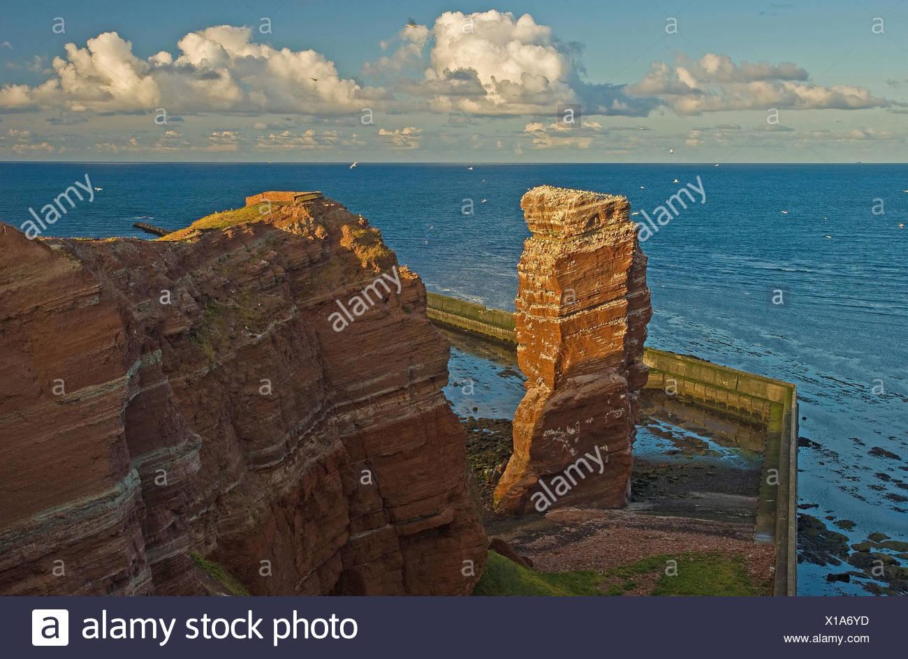 Germany, Schleswig-Holstein, Helgoland, rock spire Lange Anna, bird colony, sea view, - Stock Image