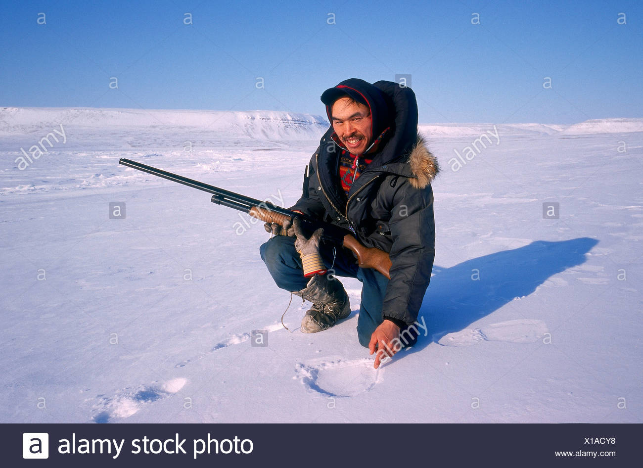 Hunter, Polar bear tracking, Franklin Island, Nunavut, Canada - Stock Image