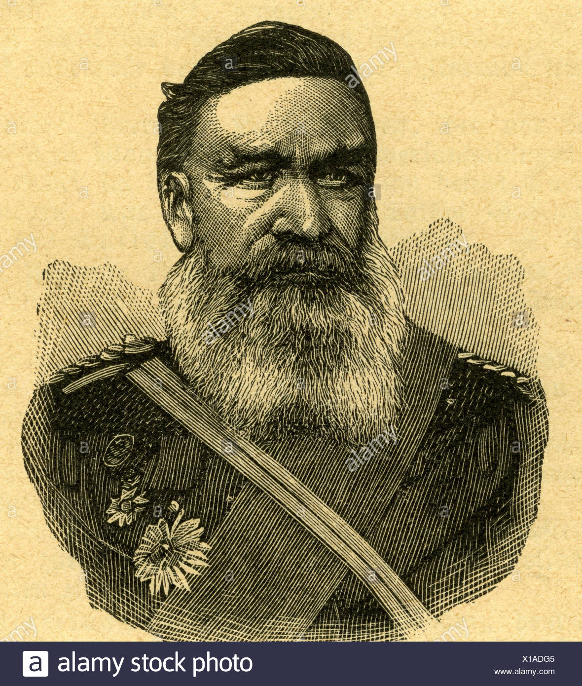 'Joubert, Petrus Jacobus 'Piet', 1834 - 1900, Boer general, portrait, engraving, 19th century, Boer War 1899 - 1902, commandan - Stock Image