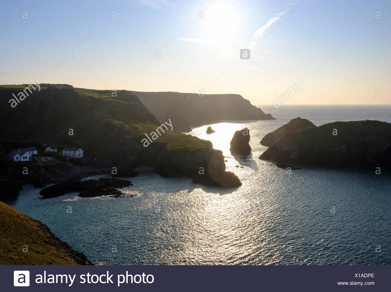 Abendstimmung, Kynance Cove, Lizard-Halbinsel, Cornwall, England, Großbritannien - Stock Image