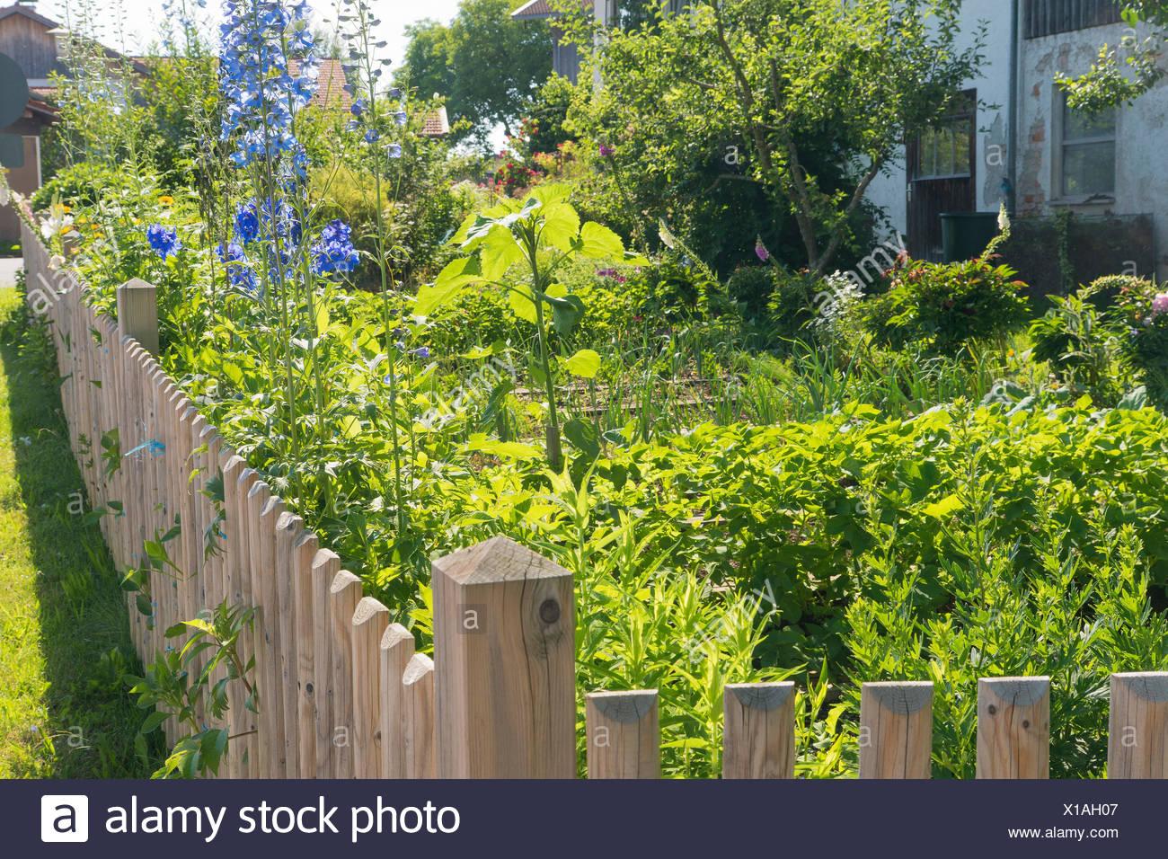 ecological  garden - Stock Image