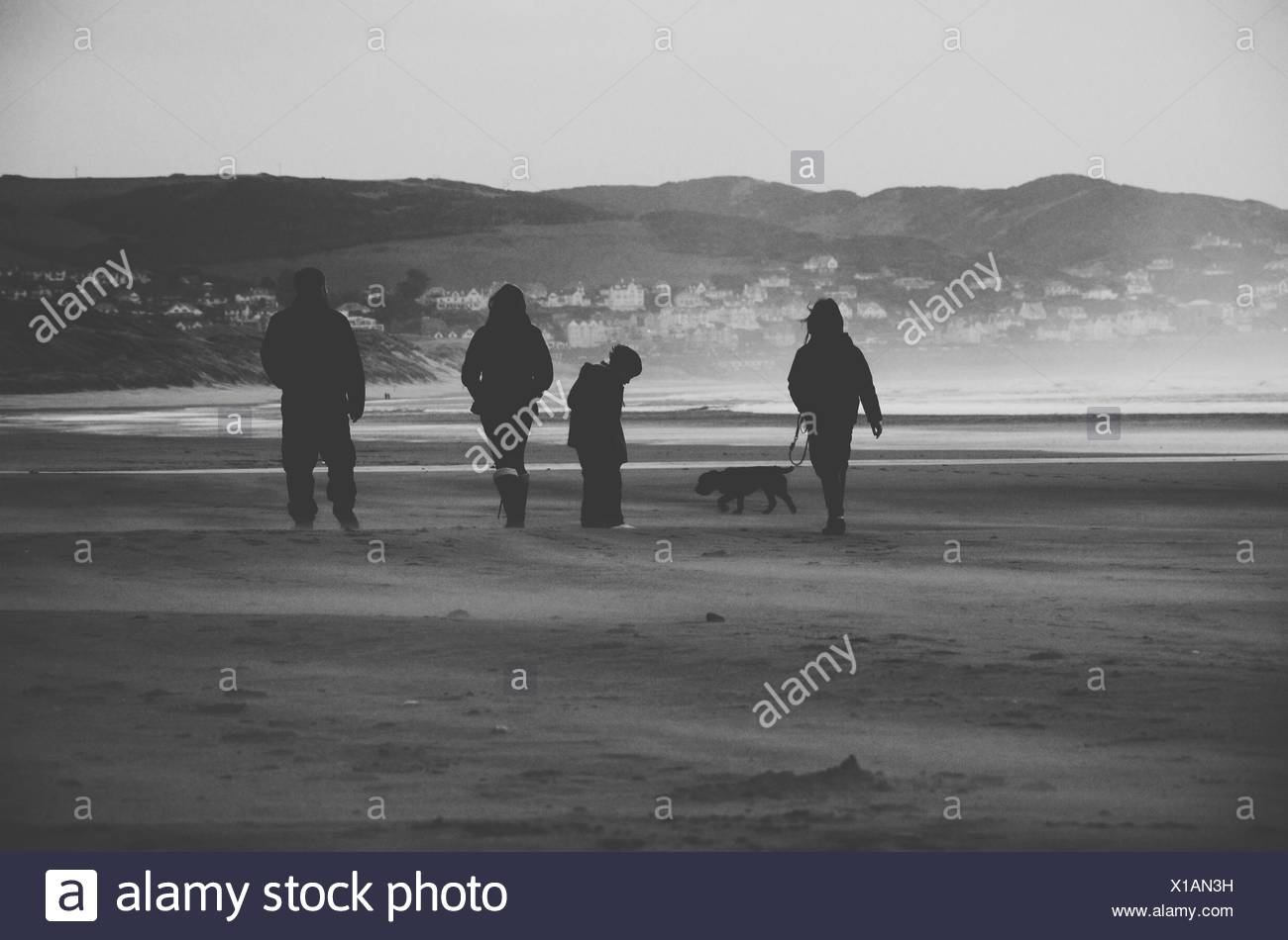 Silhouette Family With Dog Walking On Beach - Stock Image