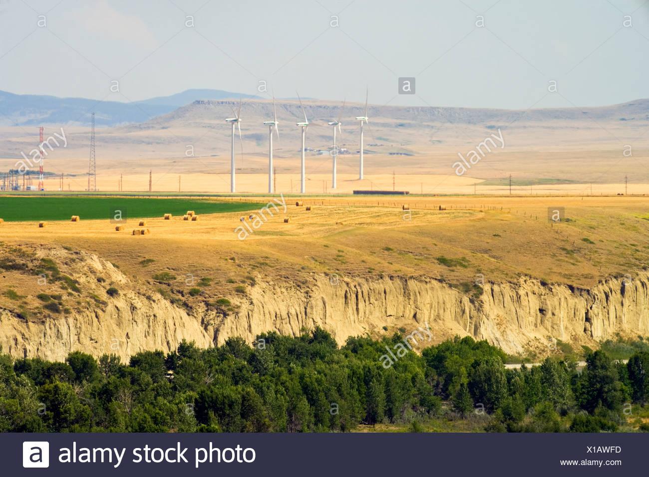 Wind turbines, Pincher Creek, Alberta, Canada - Stock Image