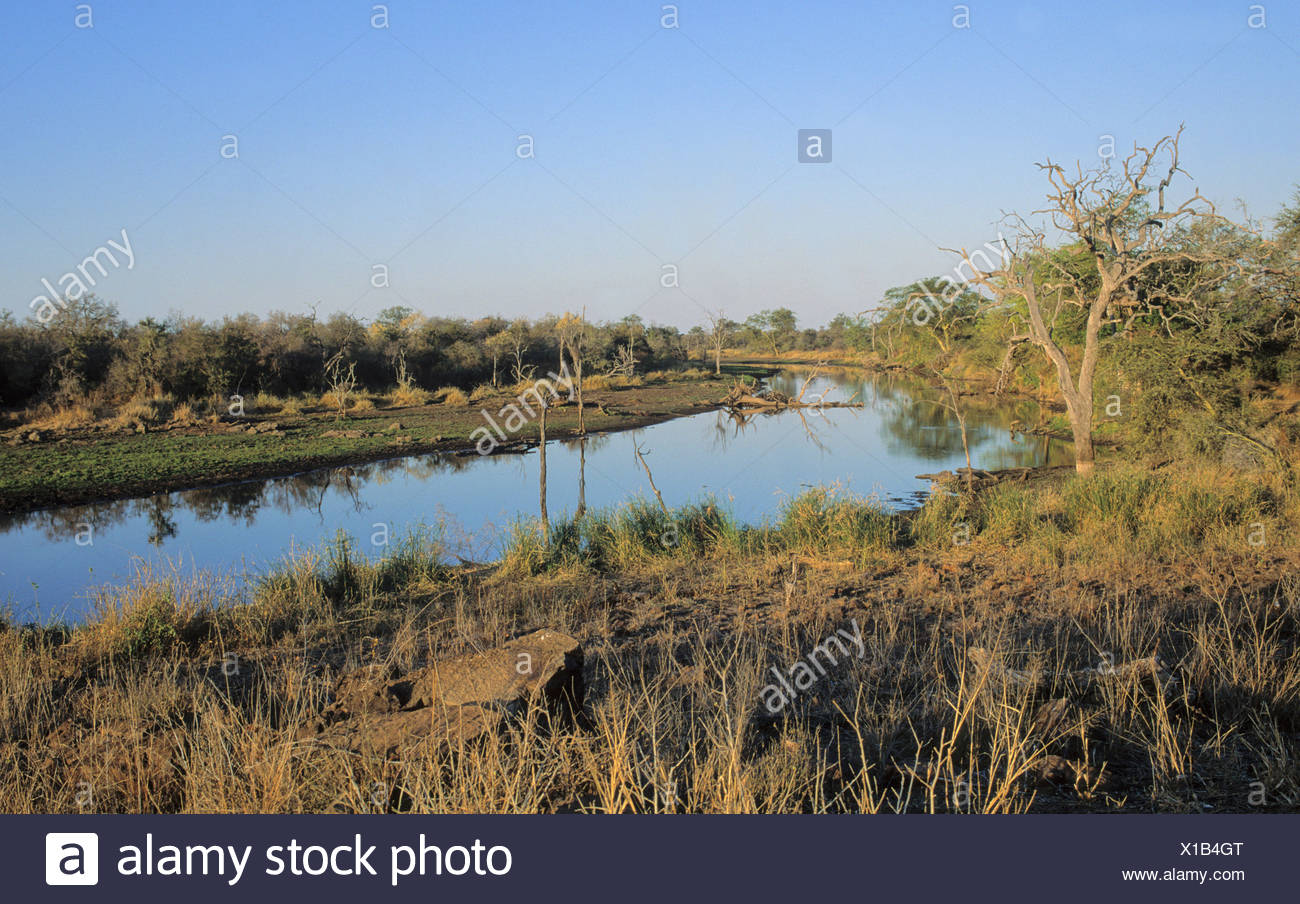 Global warming, river after normal rainfall, Kruger National Park, South Africa, sequence 1 of 2 - Stock Image
