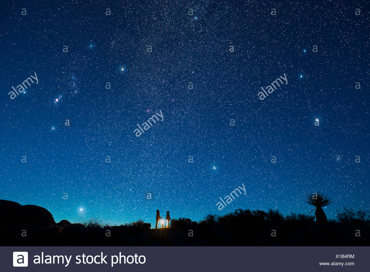 Two children gaze at star filled night sky - Stock Image