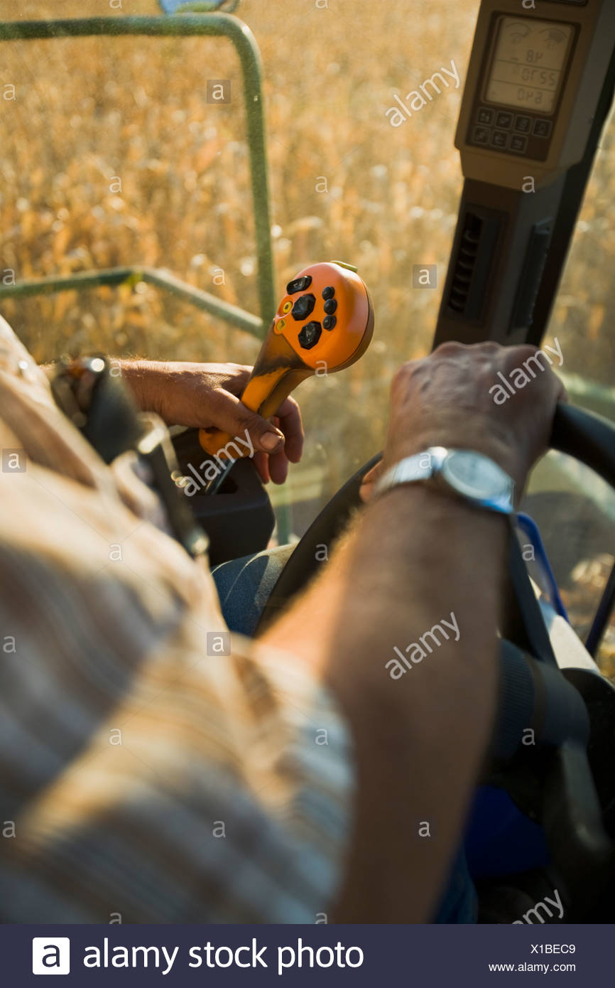 The hands of a farmer operating the controls of a combine during the grain corn harvest / near Northland, Minnesota, USA. - Stock Image