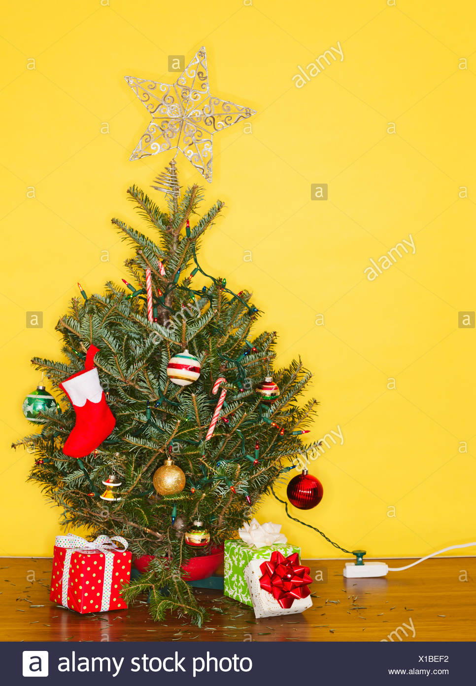 Small Christmas Tree Against Yellow Wall Studio Shot Stock Photo Alamy
