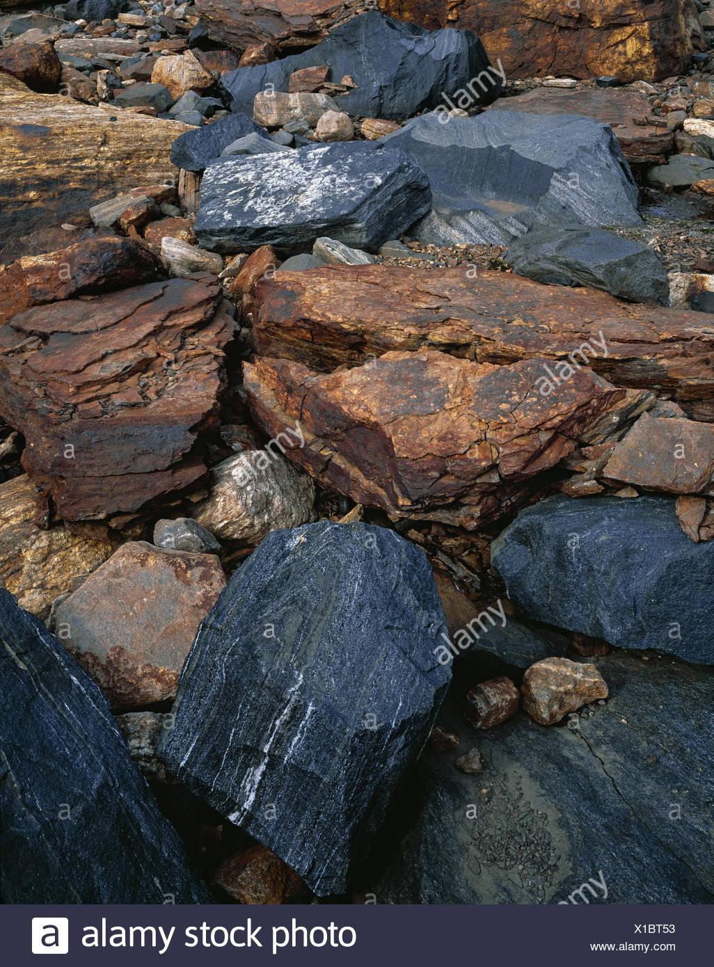 Bile lumps, Sweden, Lapland, Unna Räitavagge, - Stock Image