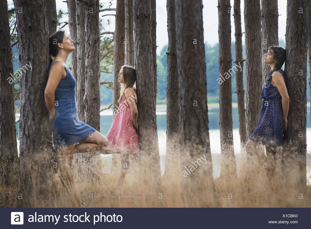 New York state USA people communing with nature tall straight trees - Stock Image
