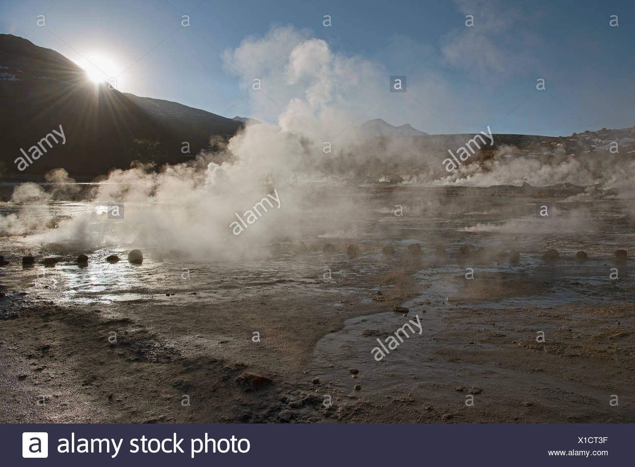 El Tatio Geysire, San Pedro de Atacama, Atacama Wüste, 4270m Höhe, Chile, Südamerika. - Stock Image