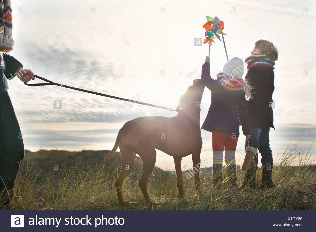 Mid adult man with son, daughter and dog at coast - Stock Image