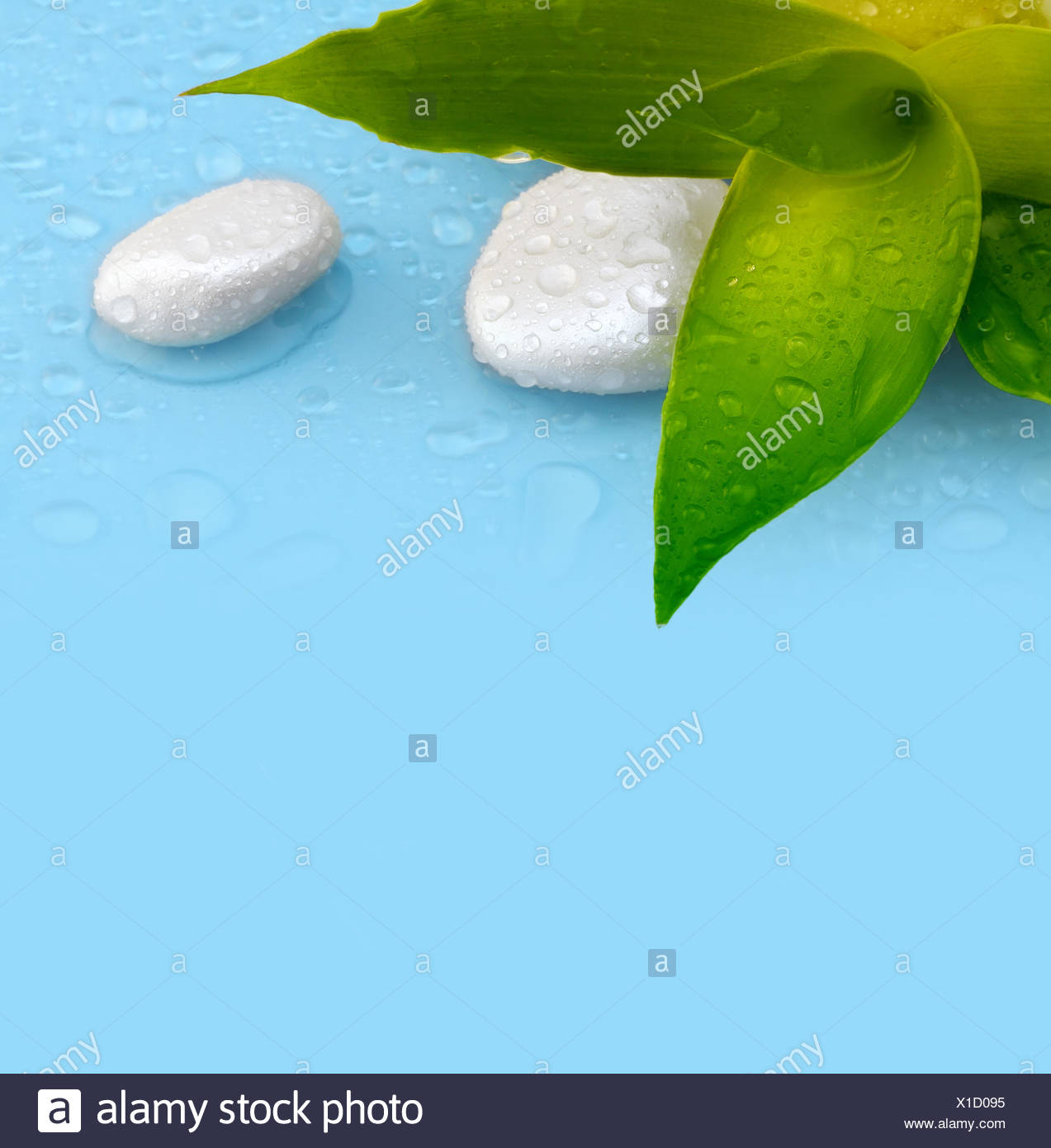 Leaf Health Eco Stone Rock Drop Wet Balance Stack