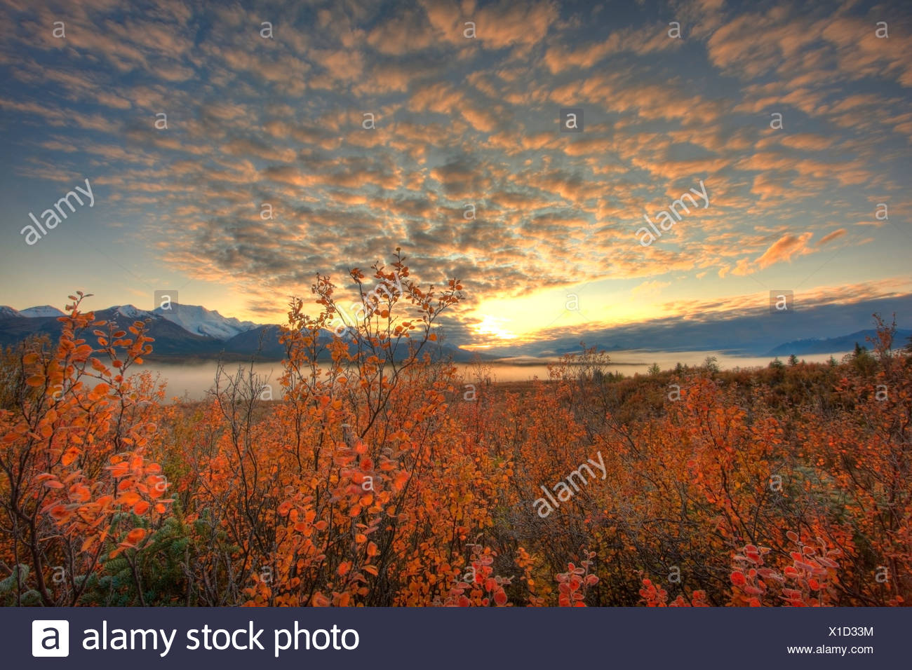 Sunrise clouds over Mount Itsi, North Canol Road, Yukon. - Stock Image