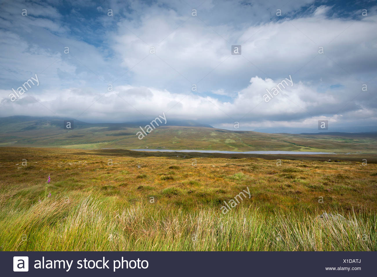View over the moor with Loch Coulside and Ben Loyal in the clouds, Sutherland, Scotland, Great Britain, Europe - Stock Image