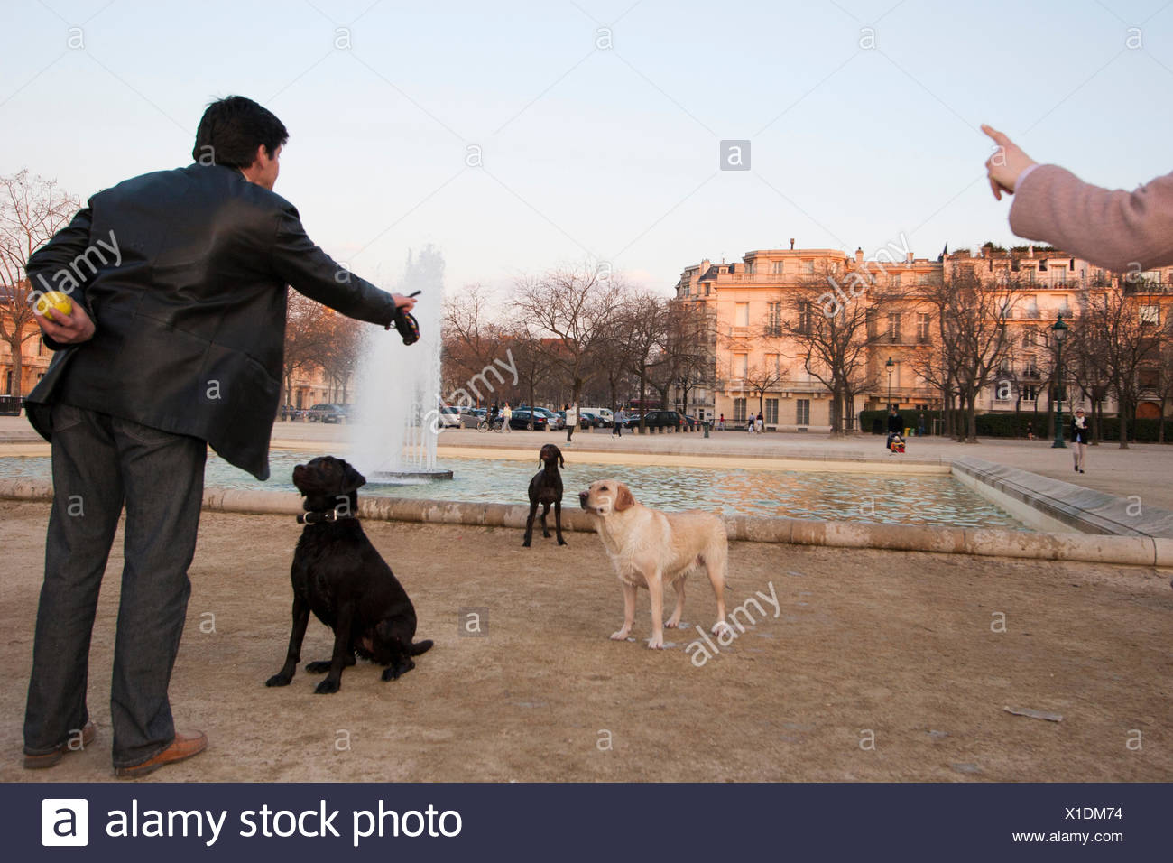 Dogs and their owners converge most evenings in the Parc du Champ de Mars. - Stock Image