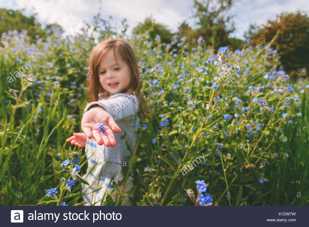 Girl holding a flower in the palm of her hand - Stock Image