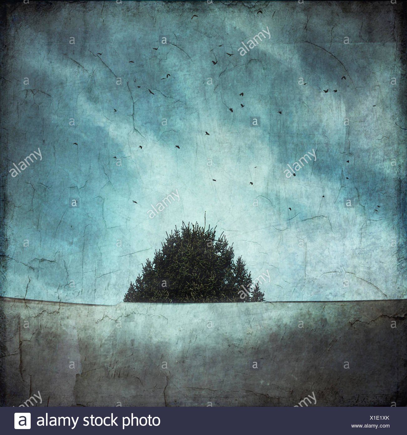 Treetop and roof with flying birds, textured effect - Stock Image
