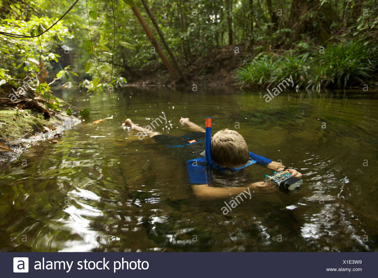 A boy snorkeling in a rain forest stream. - Stock Image