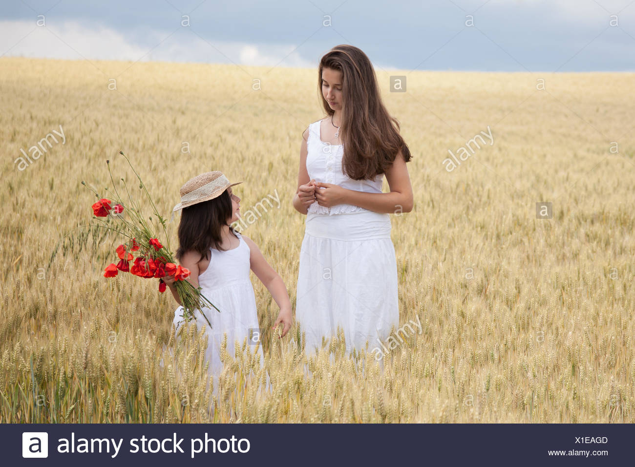 Two girls standing in wheat field with poppy flowers - Stock Image