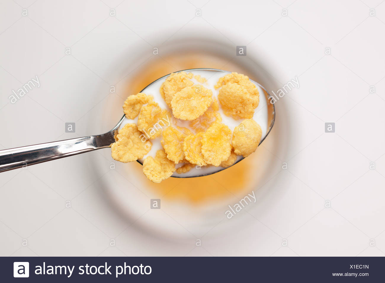 spoon full of cornflakes close-up breakfast concep - Stock Image