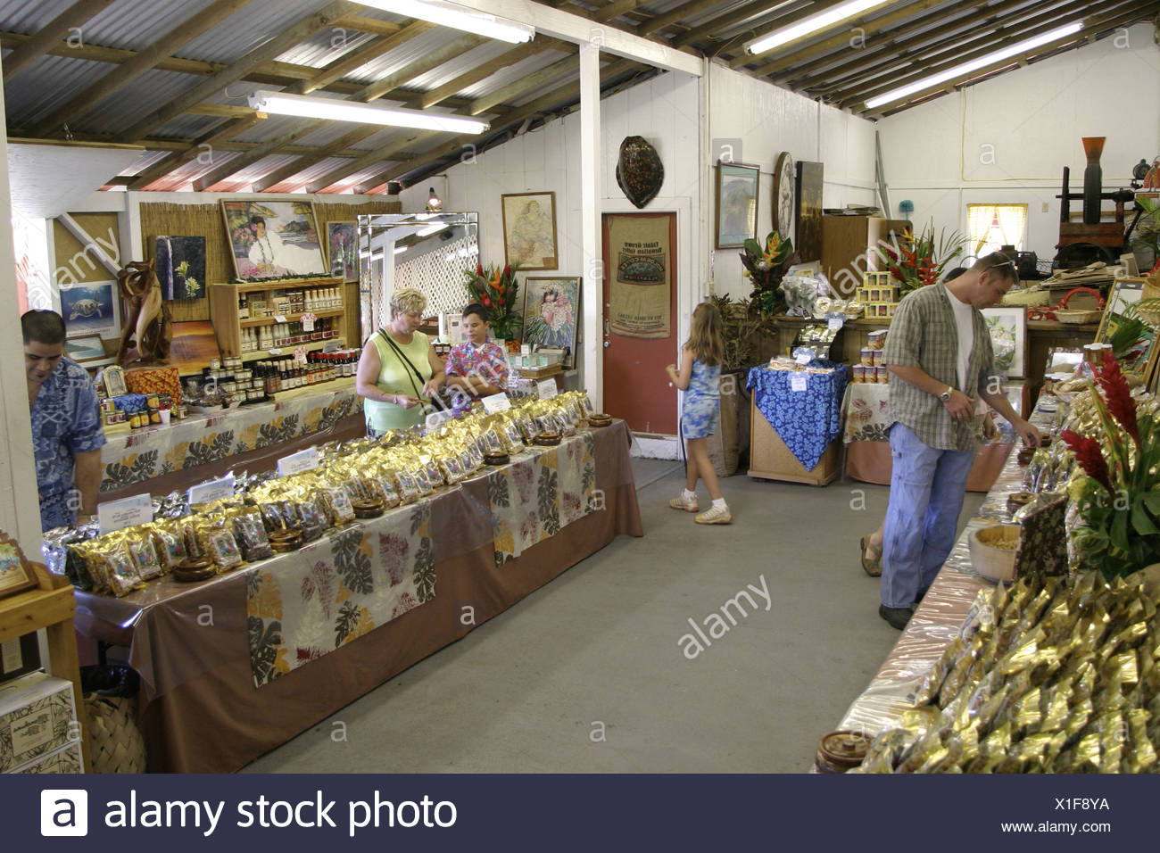 Tropical Farms Macadamia Nut Farm outlet. Besides  offering delicious macadamia nuts for traveling shoppers,there is a tropical - Stock Image