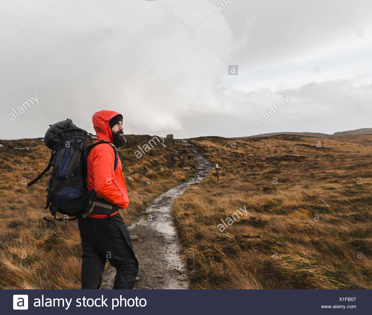 A man in winter clothing, waterproof jacket and rucksack in open countryside by a path. - Stock Image