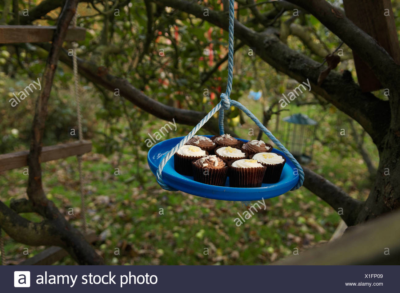 Lifting cupcakes to treehouse - Stock Image