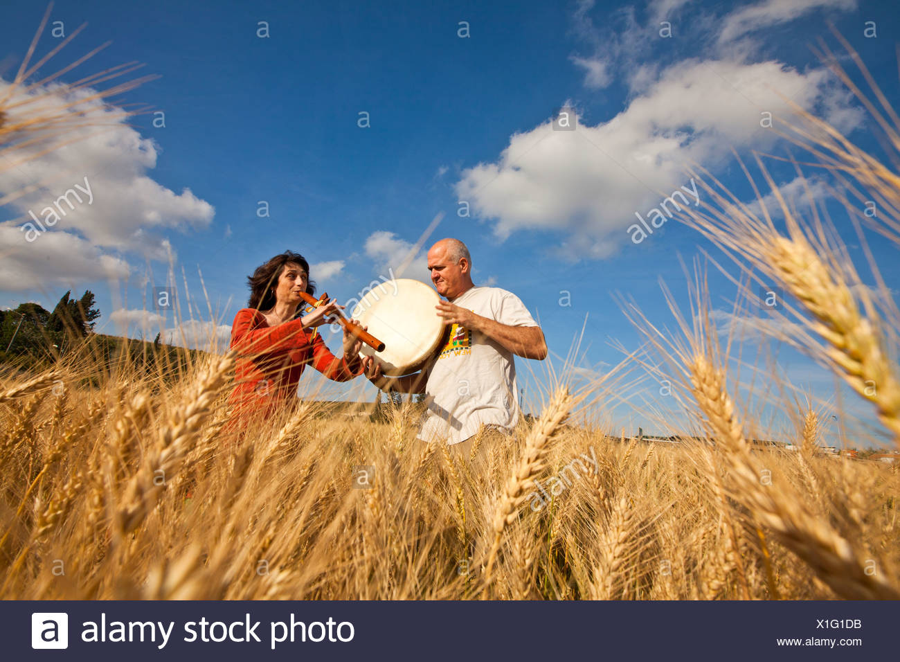 Shavuot (weeks) Jewish festival of grain harvest and agricultural products  - Stock Image