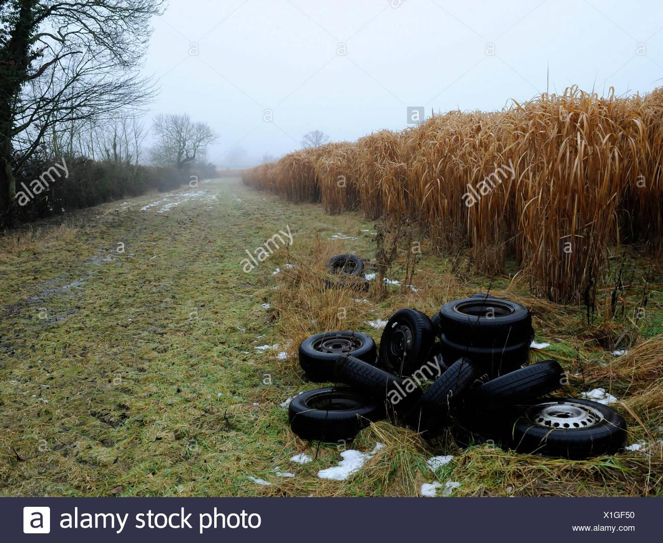 Car tyres illegally dumped on farmland. - Stock Image