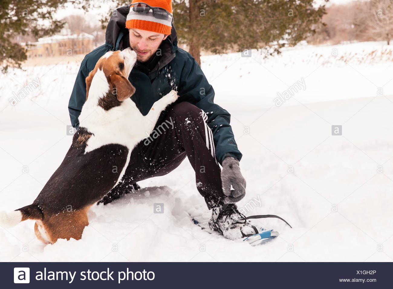 Snowshoer and his dog - Stock Image