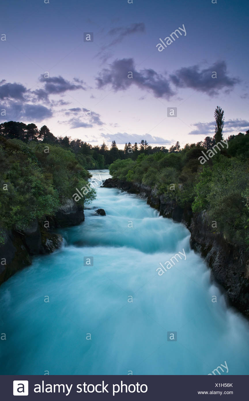 Trees Lining A Flowing River At Dusk; New Zealand - Stock Image