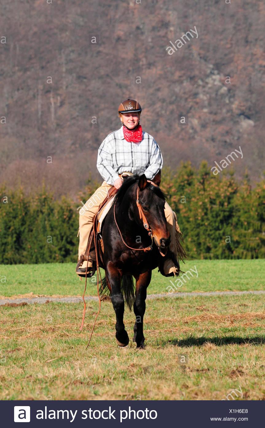 Woman Riding American Quarter Horse Stallion Western Riding With Crash Helmet Riding Helmet Fei Trail Riding Stock Photo Alamy