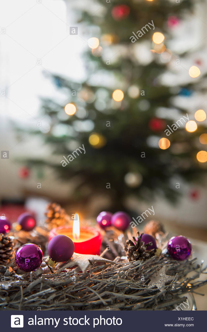 Decorative Advent Wreath With Burning Candle In Front Of Christmas Tree Bavaria Germany