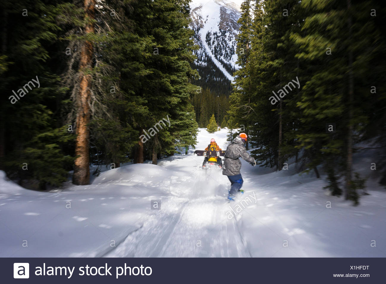 Snowboarder getting towed behind snowmobile through forest - Stock Image