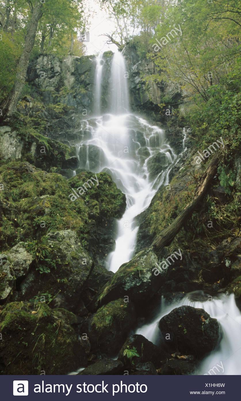 Lewis Falls (near Apalachian TR). Shenandoah National Park. Virginia. USA - Stock Image