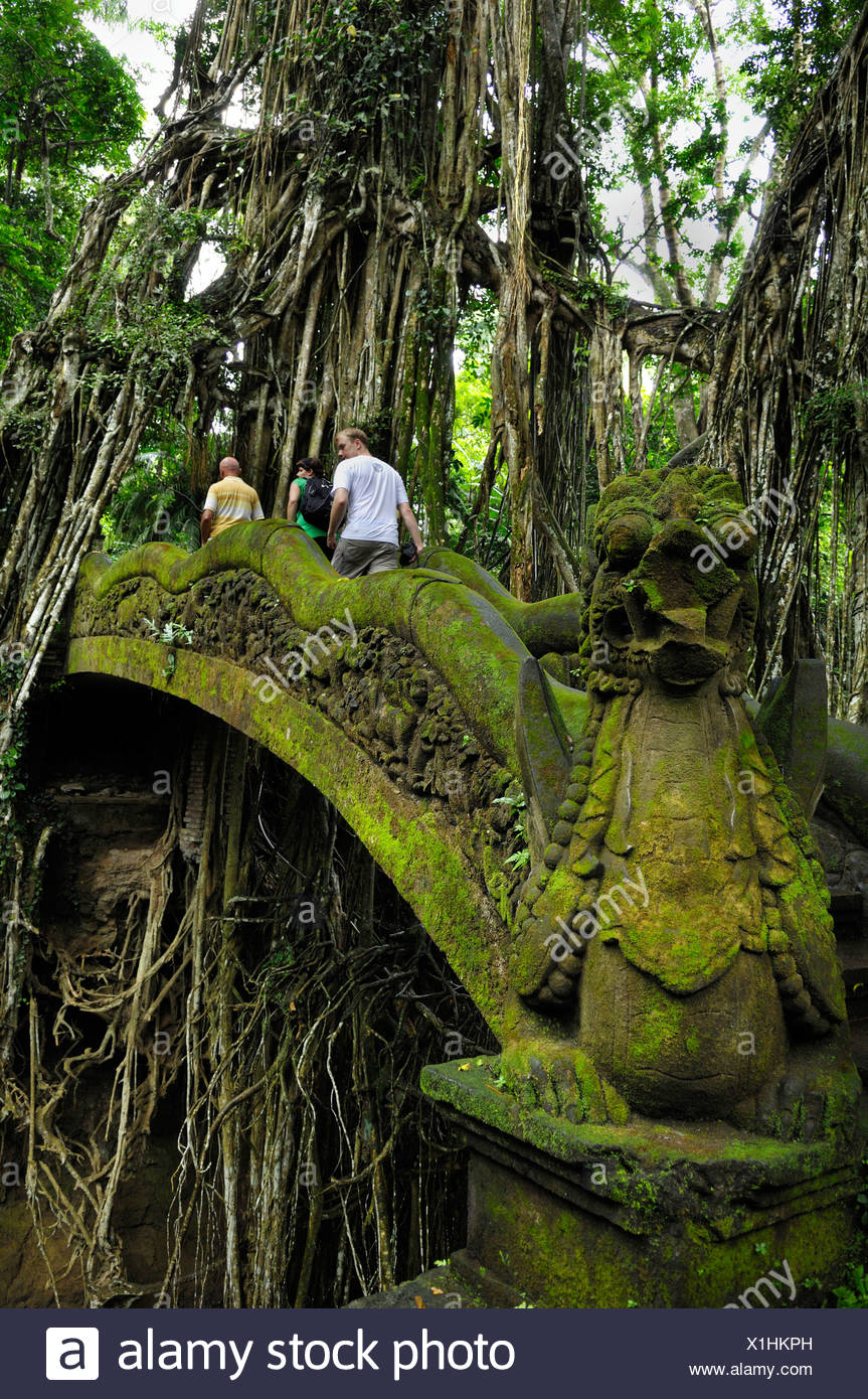 Stone bridge in the jungle in the Ubud Monkey Forest, Bali, Indonesia, Southeast Asia - Stock Image