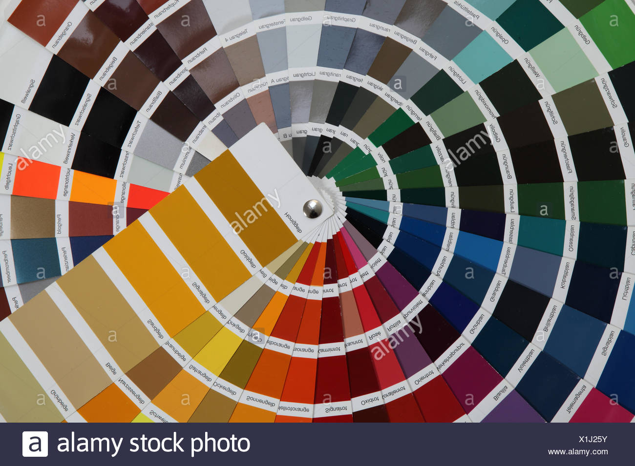 paint renovation do-it-yourself enthusiast - Stock Image