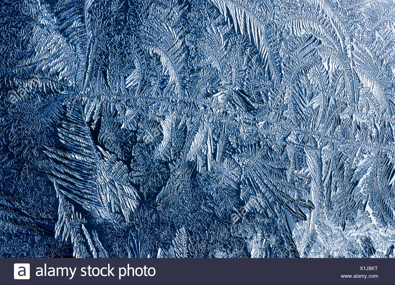 Frost pattern, ice flowers, ice crystals - Stock Image