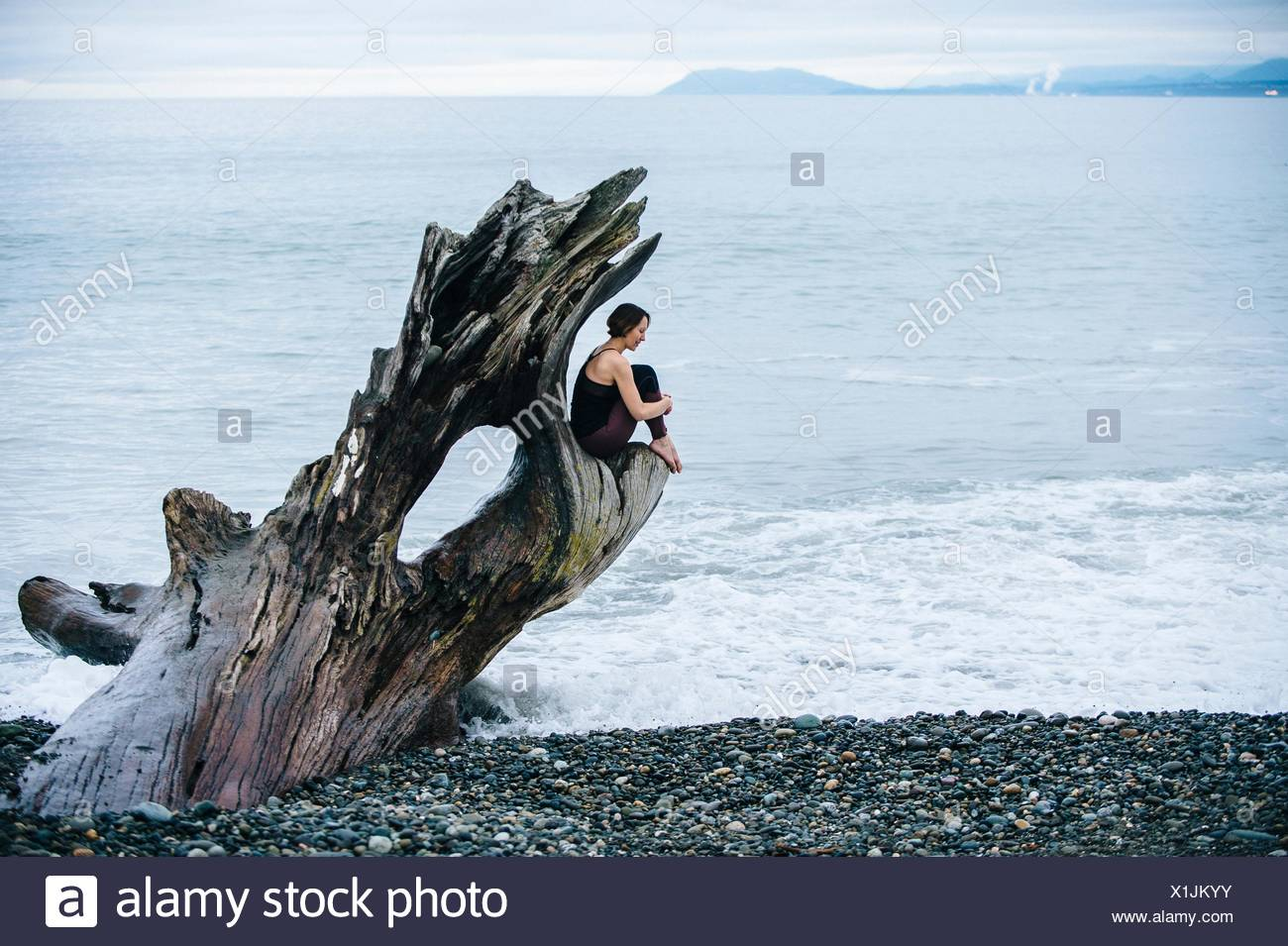 Mature woman sitting on large driftwood tree trunk at beach - Stock Image