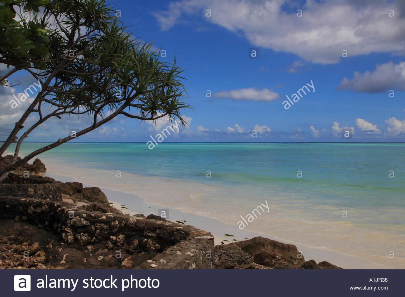 Indian Ocean, Tanzania, Sansibar - Stock Image