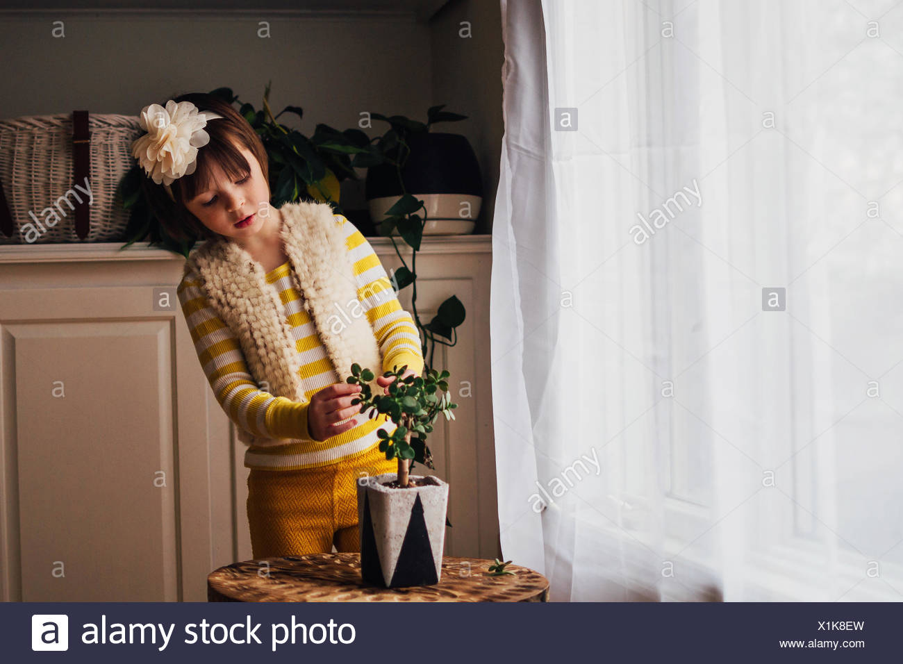Girl tending to a plant in living room - Stock Image