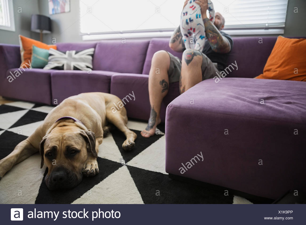 Dog laying below father and baby son sofa - Stock Image