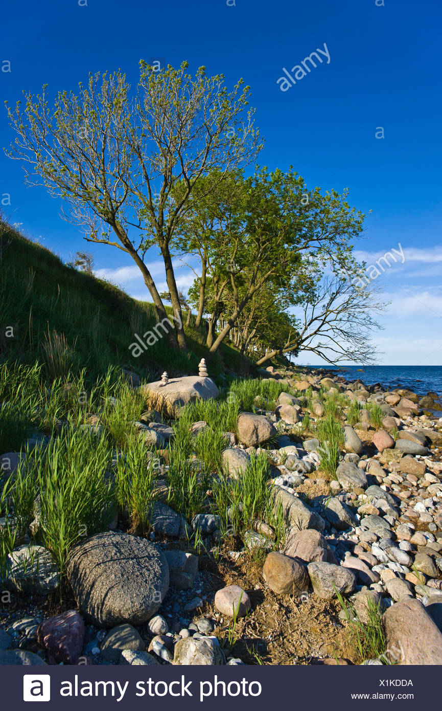 cliff staberhuk,insel fehmarn - Stock Image