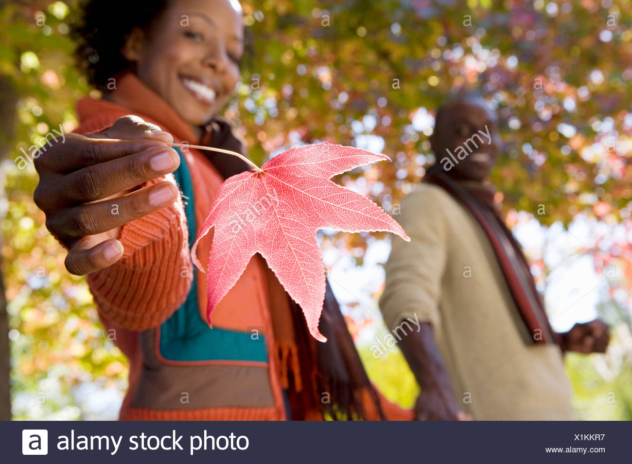 Couple walking hand in hand in autumn park focus on woman holding red maple leaf smiling side view portrait - Stock Image