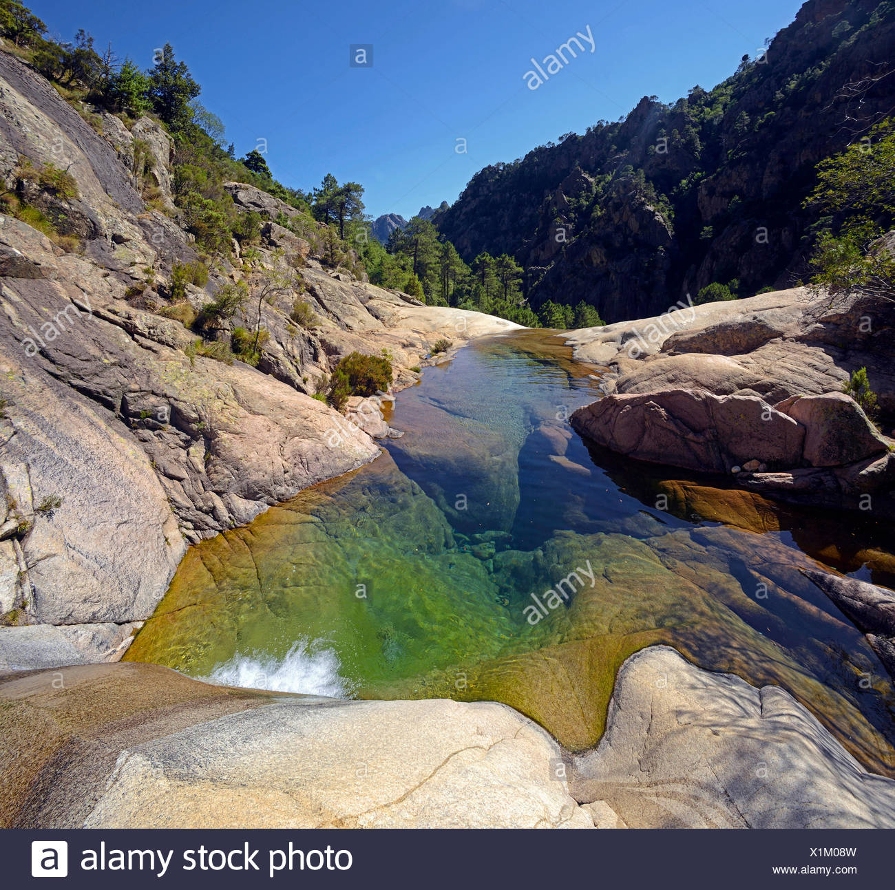 the canyon of Purcaraccia in Bavella mountain, France, Corsica - Stock Image