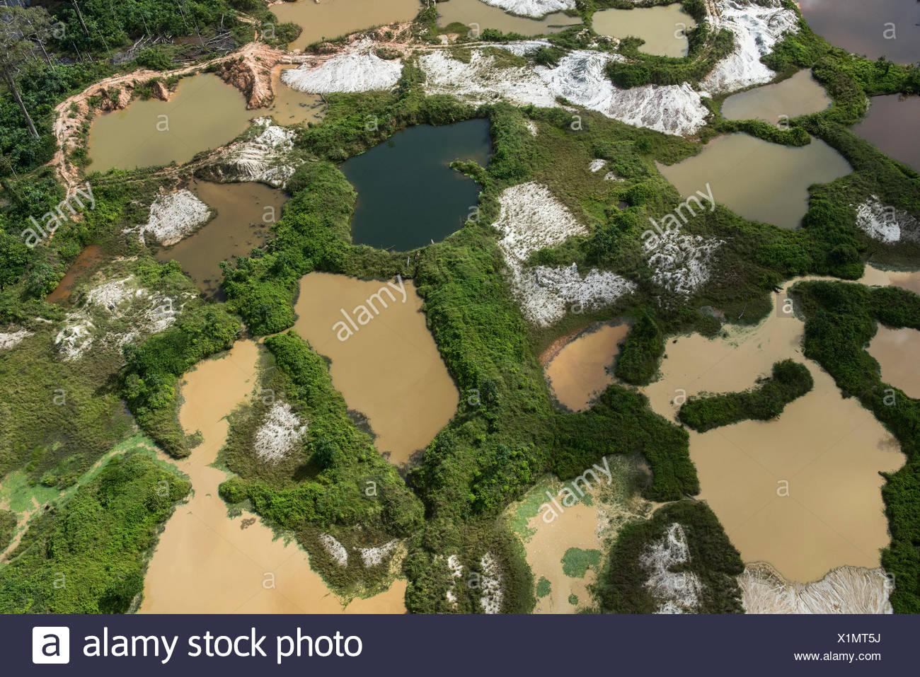 Aerial view of illegal gold mining in Arimu, Guyana, South America - Stock Image