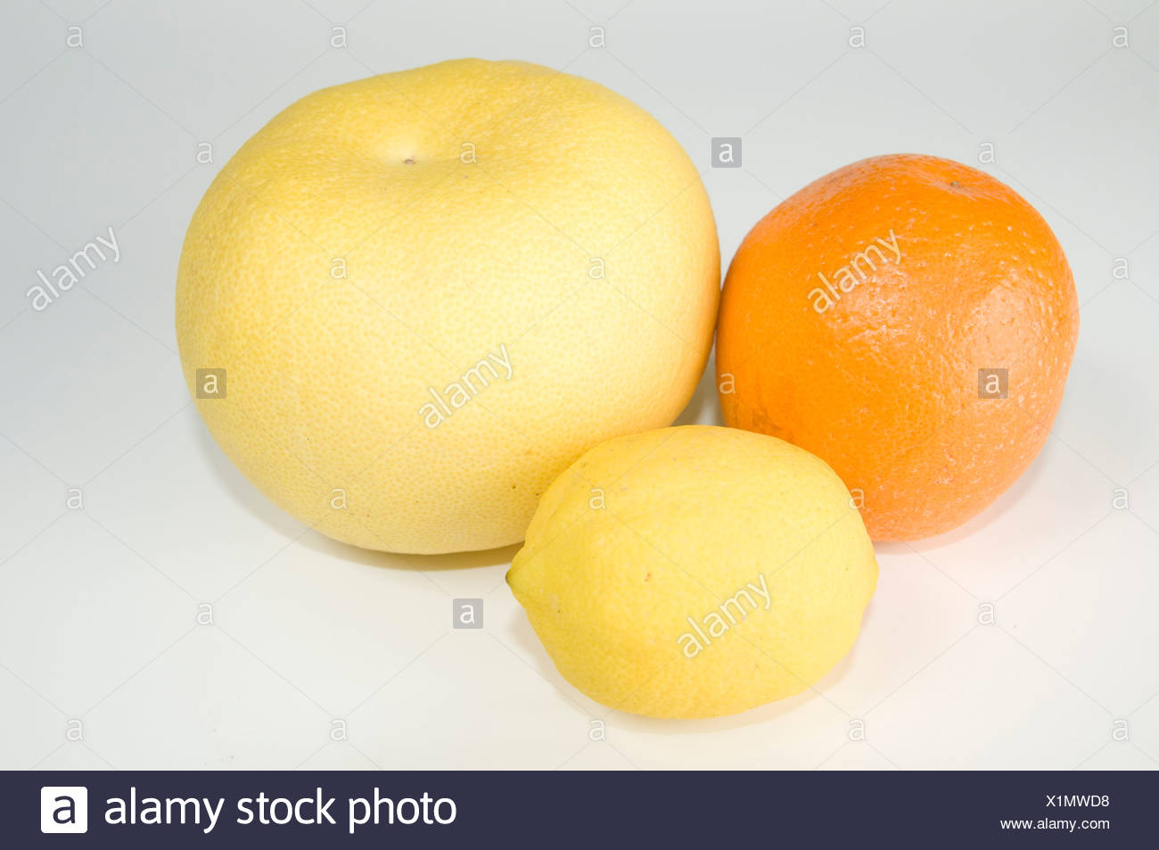 Cutout of Citrus Fruit on white background including an Orange a Lemon and a Grapefruit - Stock Image
