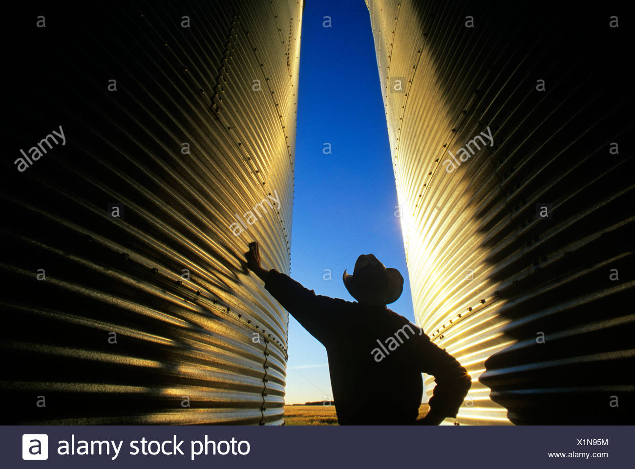 A farmer looks out over his field from his grain storage bins at sunset near Dugald, Manitoba, Canada - Stock Image